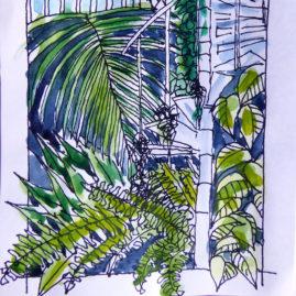 Palm House Sketch - pen & watercolour