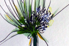 chive flower watercolour