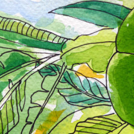 Palm House Leaves