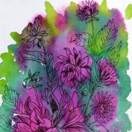 chrysanthemums ©KarenSmith