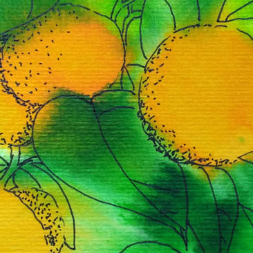 oranges detail with ink