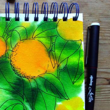 Daler Rowney sketchbook & Rotring ArtPen