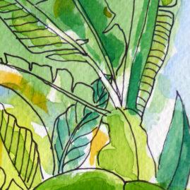 Palm House Watercolour3 Detail - pen & watercolour