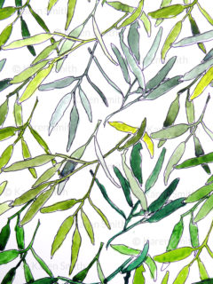gum leaf pattern watercolour trials