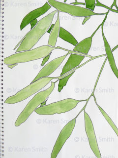 gumleaves sketch greens