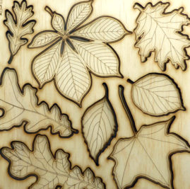 autumn leaves laser cut from plywood ©KarenSmith