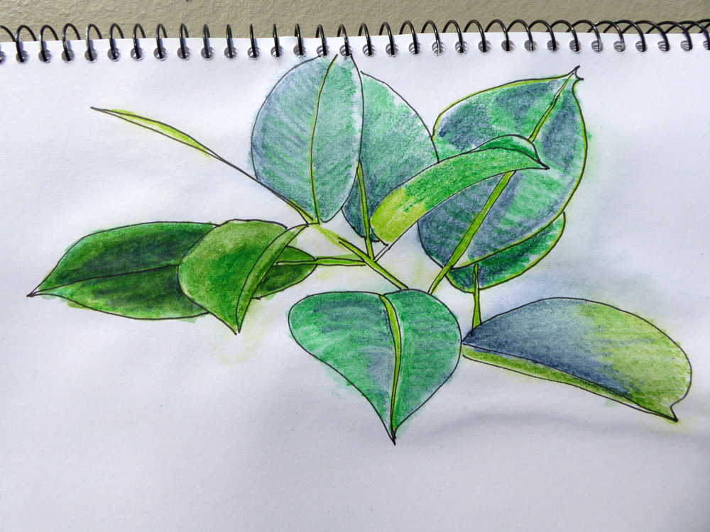 Inktense pencil on paper using airbrush and water
