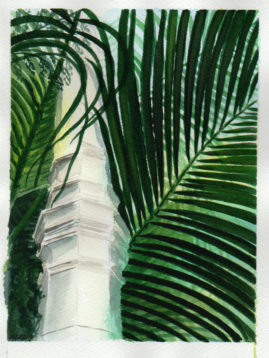 #WorldWatercolor Month July 13_Palm House