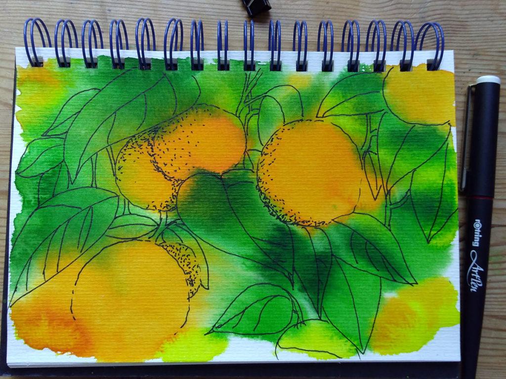 oranges_4 ©KarenSmith