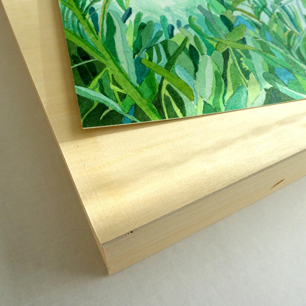 Saltbush Framing ©KarenSmith