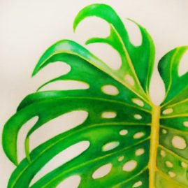 monstera-fabric_detail ©KarenSmith