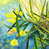 Watercolour painting of yellow wattle blossom by Karen Smith