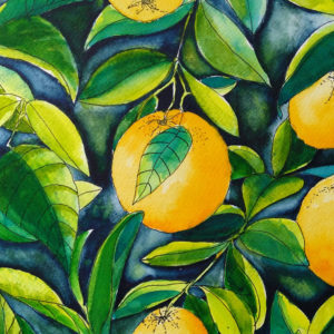 Watercolour painting of oranges ands leaves by Karen Smith